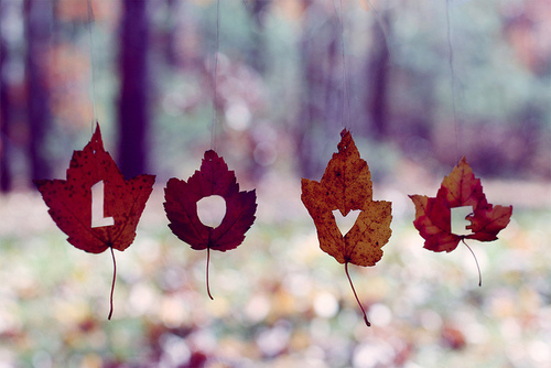 Lovely Poems – Fall themed